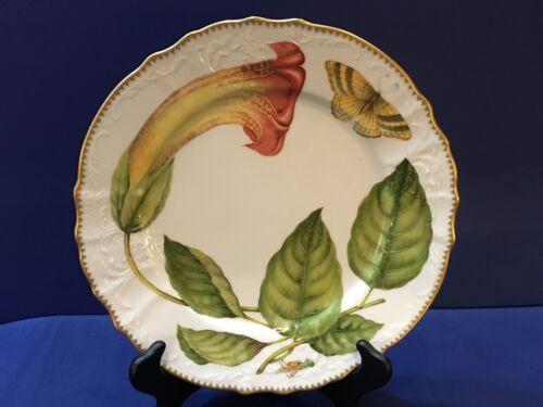 "Anna Weatherley Treasure Garden Dinner Plate 10.5"""