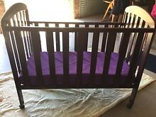 Timber cot with mattress Windella Maitland Area Preview