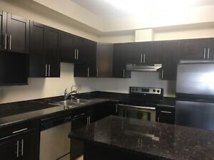 ROOM TO RENT IN LUXURY APARTMENT - NEAR U OF M