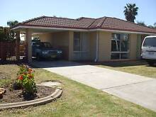 4 X 2 HOUSE FOR RENT - THORNLIE Thornlie Gosnells Area Preview