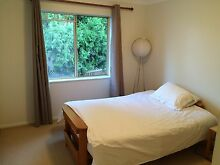 Wentworth Falls SHARE APARTMENT Wentworth Falls Blue Mountains Preview