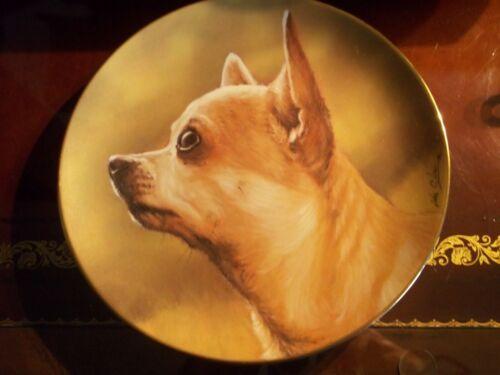 """Chihuahua Danbury Mint Collector"