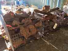 Uni Habitat Aquarium Rocks Prices Slashed Wattle Grove Kalamunda Area Preview