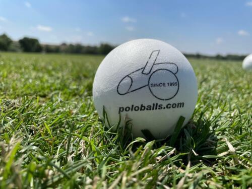 100 Polo Balls