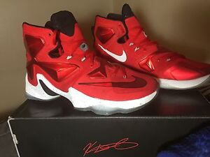 110$ Nike Lebron James Shoes 8.5