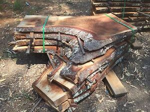 Timber Slabs - Moreton Bay Fig (Pack 2) Caboolture Caboolture Area Preview