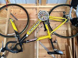 Giant road bike OCR