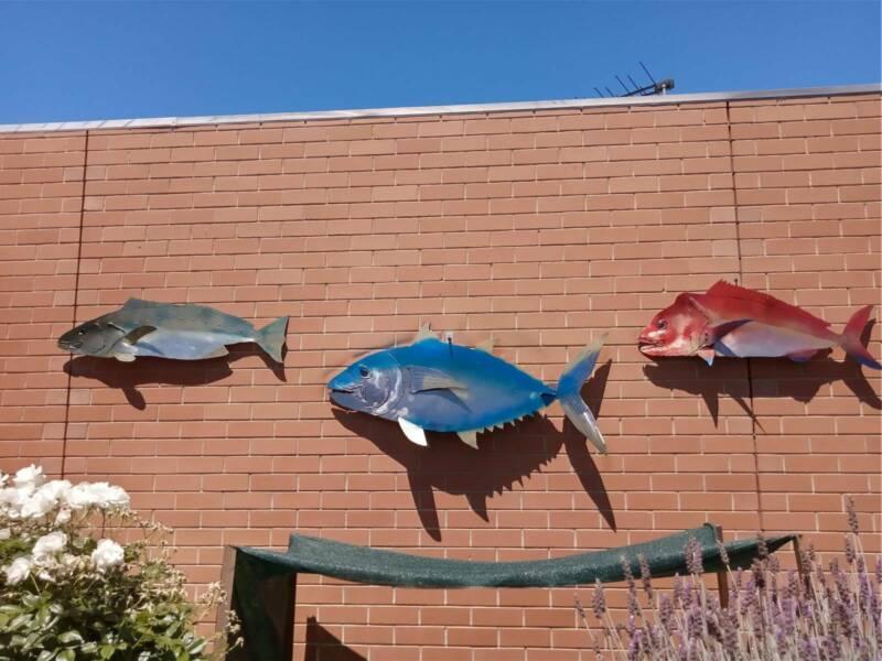 Australian Fish Outdoor Wall Art Hanging Metal Decorative Sculpture Art Gumtree Australia Charles Sturt Area Royal Park 1260743776