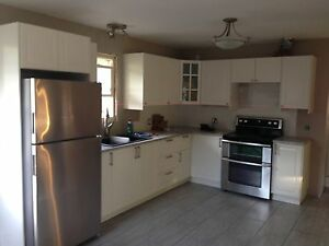 Kitchen Install and Furniture Assembly services  Cambridge Kitchener Area image 6