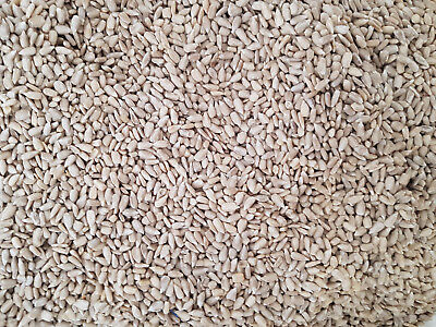 Wild Bird Food Feed Seed Bakery Grade Premium Sunflower Hearts Seeds 5kg