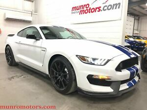 2017 Ford Mustang Shelby Technology Package Stripes