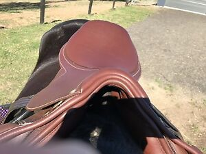 Collegiate jump saddle Gillieston Heights Maitland Area Preview