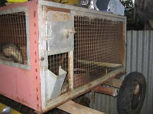 Ferrets $60 each and cages (see prices) for sale Temora Temora Area Preview