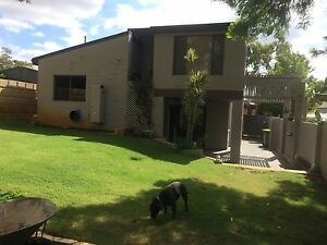 Beautiful 3 x 1 rental in great part of Bayswater Geraldton Geraldton City Preview