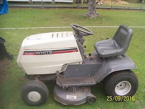 MTD / white ride on mower Warwick Southern Downs Preview