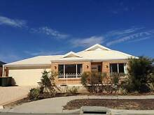 Butler – Lovely 3 x 2, on a Low Maintenance double fronted block. Butler Wanneroo Area Preview