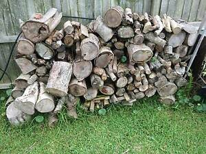 Fire Wood - Cut and Seasoned x 4 Stacks. Copacabana Gosford Area Preview