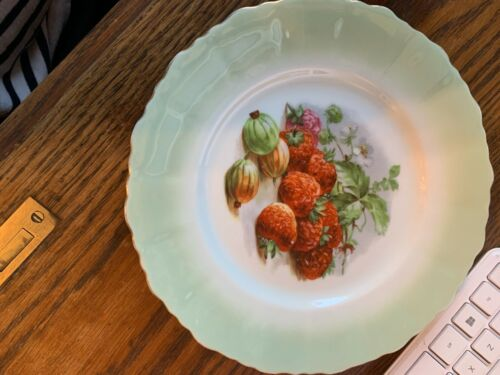 VINTAGE PRETTY HAND PAINTED GERMAN PORCELAIN FRUIT PLATE WITH FREE SHIPPING