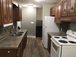 Renovated P-Patch Semi for Rent