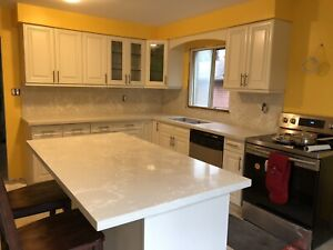 Solid wood kitchen cabinets on sale 416-901-9063