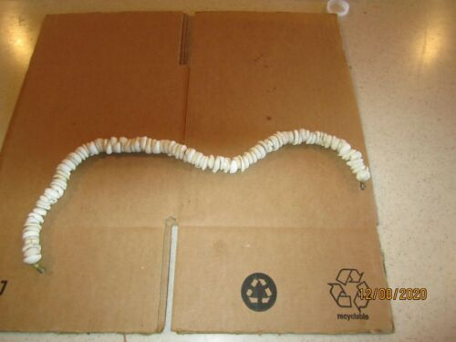 "VINTAGE GENUINE PUKA SHELL NECKLACE 17"" - 1/2"" Shells"