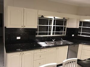 Medium to large Kitchen Chiswick Canada Bay Area Preview