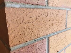 House bricks wanted as per pic Lockleys West Torrens Area Preview