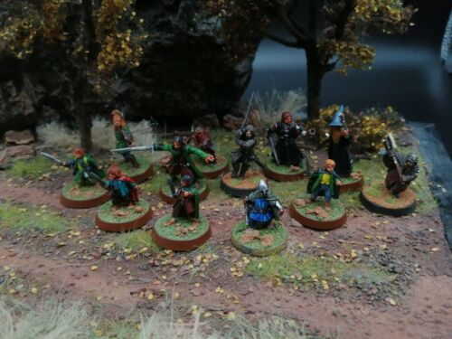 THE FELLOWSHIP OF THE RING METAL OOP PAINTED  GAMES WORKSHOP LORD OF THE RINGS