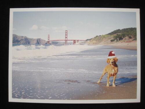 """6 GOLDEN GATE Retriever DOG Christmas Cards w/Envelopes PALM PRESS 7"""" x 5"""""""