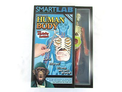 SmartLab Human Body Anatomy Science Book/Toy Set Squishy Organs - Organs Human Body