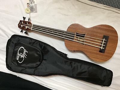 EDDY FINN EF-EBASS-FL short scale FRETLESS acoustic electric BASS GUITAR w/ BAG