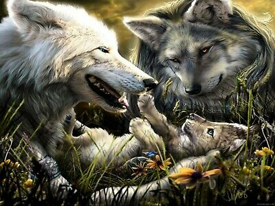 US Seller- native American spirit animal wolf art poster artwork wall decor