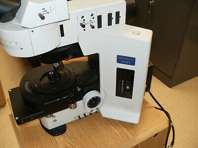 Olympus Bx61 Fluorescent Microscope