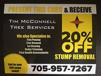 20% OFF Stump Removal
