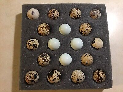 18 Assorted Coturnix Quail Hatching Eggs. Free Shipping.