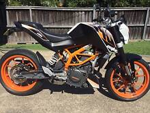 2013 KTM Duke 390 Dee Why Manly Area Preview