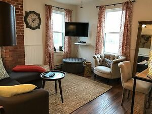 Newly Renovated Stylish Apartment in Downtown Halifax