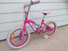 Girls Bike Tura Beach Bega Valley Preview