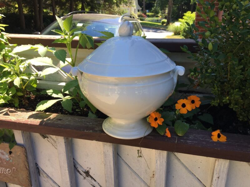 Antique Ironstone French Tureen Gorgeous Excellent Condition Large Apple Pepper
