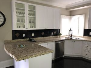 Kitchen cabinets and granite counter top - virtually new