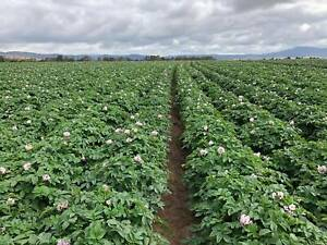 Cropping Operations Manager