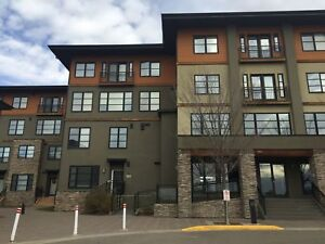 Stunning &Trendy Living in SE Red Deer! 2 bed, 2 bath condo!