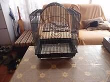 Black Bird Cage Newton Campbelltown Area Preview