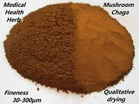100% Pure Nature Chaga Powder 100g Without Admixtures -  - ebay.it