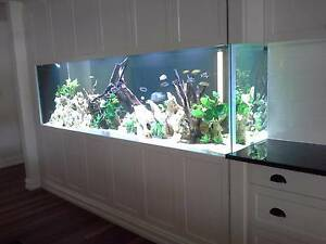 ** Elite Fish ** Custom Aquarium Fish Tank Shrimp racks marine Mount Barker Mount Barker Area Preview