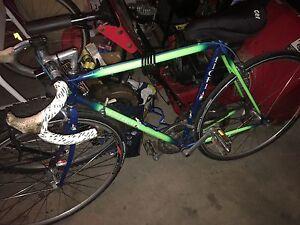 Fiori Road/Race bike