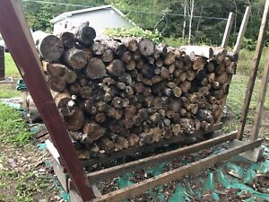 Free bonfire wood
