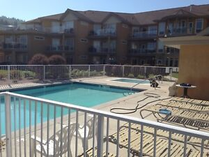 Fully furnished 2 bedroom condo lake front