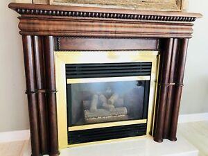 Gas fireplace insert / wood mantel