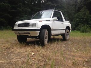 1993 lifted tracker